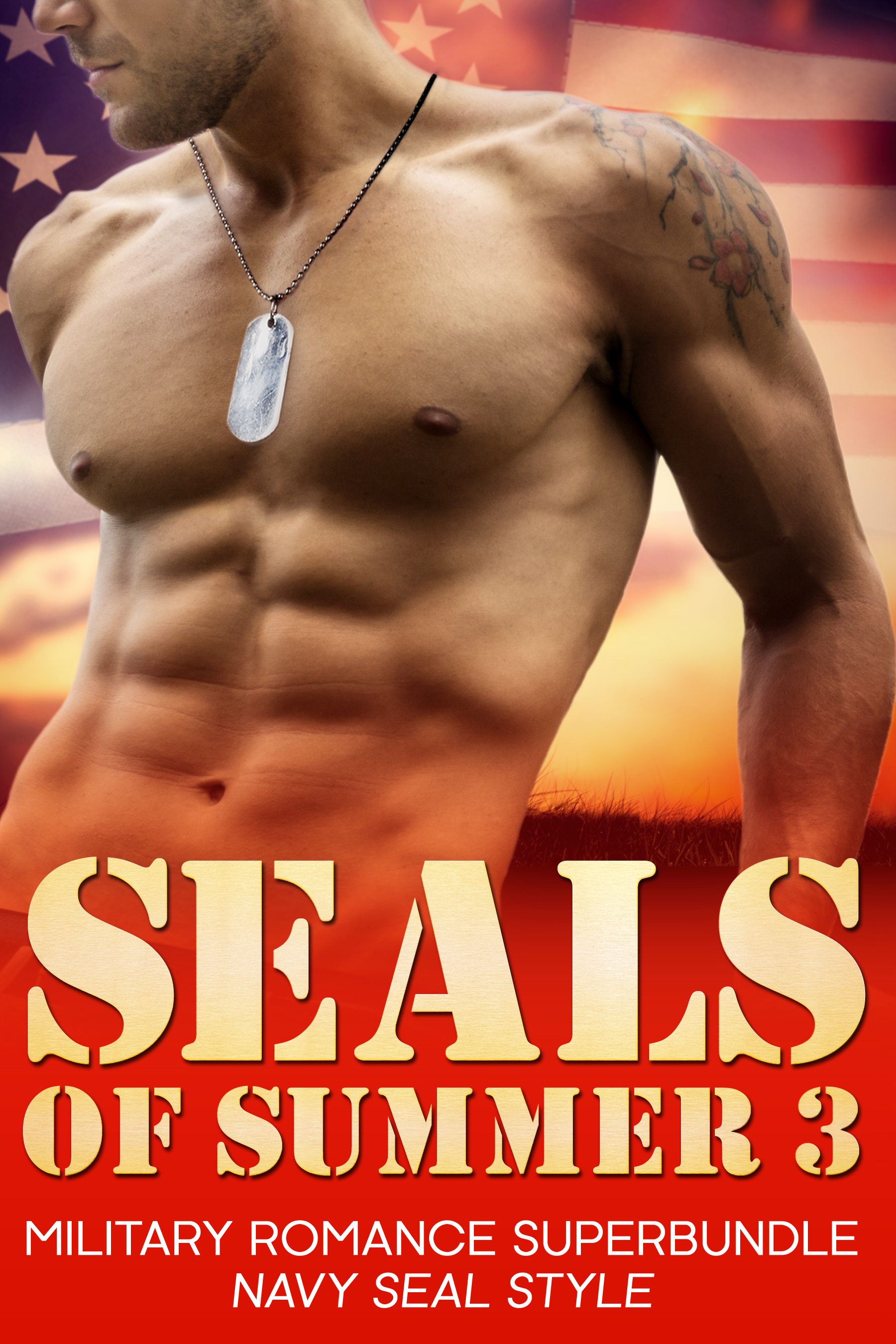 SEALS of Summer 3
